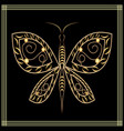 gold lace butterfly on black background filigree vector image