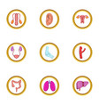 human system icon set cartoon style vector image vector image