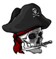 skull of a pirate in a hat vector image
