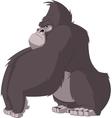 funny monkey vector image vector image