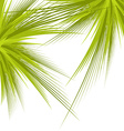 Green branches isolated vector image
