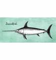 ink sketch of swordfish vector image vector image