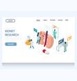 kidney research website landing page design vector image vector image