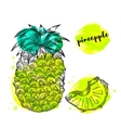 Pineapple fruit with watercolor splashes vector image vector image