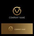 round letter v technology gold logo vector image vector image