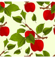 seamless texture branch apple tree with apples vector image vector image