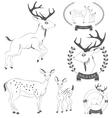 Set of vintage deer emblems labels logo vector image vector image