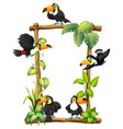toucan on wooden frame vector image vector image