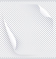 white transparent page with two curled round vector image vector image
