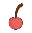 cherry fresh isolated icon vector image