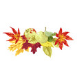decorative decor headline element with autumn vector image