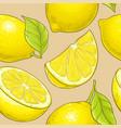 lemon fruit pattern on color background vector image