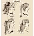 set of different ponytail types vector image
