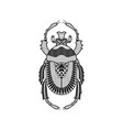 beetle hand drawn vector image vector image