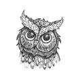 dotwork owl head vector image vector image