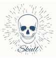 skull and vintage sun burst frame vector image vector image