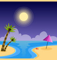 summer holidays night flat background vector image
