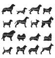 dogs profile silhouette icon set vector image