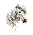 Colored hand drawing horse head vector image vector image