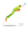frog jumping to catch fly isolated on white icon vector image vector image