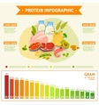 Healthy Protein Food Infographic Flat Poster vector image vector image
