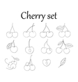 Set of line drawing cherry vector image vector image