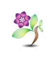 beauty flower business logo white background vector image vector image