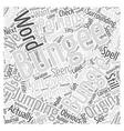 Bungee or Bungie Jumping Word Cloud Concept vector image