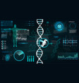 hud dna infographic interface vector image
