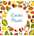poster of exotic fresh tropical fruits vector image vector image