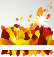 Fall background vector image