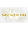 Australia Day 3 vector image
