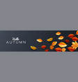 autumn season background decorate with leaves vector image vector image