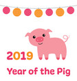 chinese new year card 2019 year of the pig vector image vector image