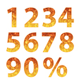 Collection of autumn numbers vector image