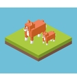 Isometric icon design vector image