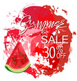summer sale greeting banner vector image vector image