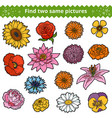 find two same pictures color set flowers vector image vector image