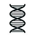 Human DNA isolated flat icon vector image vector image