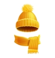 Knitted Hat And Scarf Flat vector image vector image
