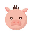 pig face animal vector image
