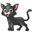 black cat cartoon isolated on white background vector image
