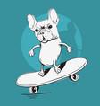 french bulldog make a balance with a skateboard vector image