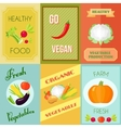 Healthy Food Mini Poster Set vector image
