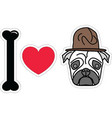 I love pug with old fashion military style vector image vector image