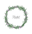 round natural backdrop or wreath made of rosemary vector image vector image