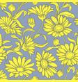 calendula seamless pattern vector image vector image