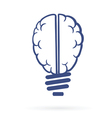 human brain lightbulb vector image