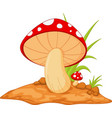 mushrooms isolated on white vector image vector image