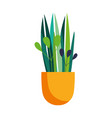 potted plant decoration isolated icon on white vector image vector image